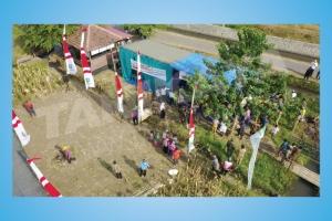 Acara Panen dan Gerakan Tanam Jagung Di Situbondo 2017