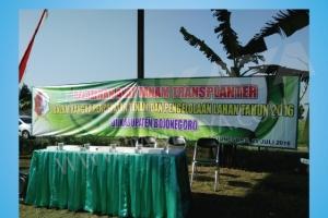 Pelatihan dan Uji Coba Mesin Rice Transplanter di Bojonegoro 25 Juli 2106