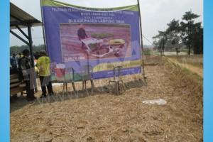 Pelatihan dan Uji Coba Mesin Rice Transplanter di Kab. Lampung Timur 2015