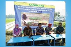 Pelatihan dan Uji Coba Mesin Rice Transplanter di Kediri 31 Agustus 2016