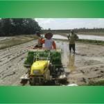 Rice Transplanter TANIKAYA Untuk Petani Desa Nampirejo